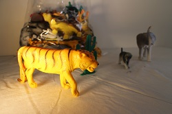 Collection of Jungle Animals